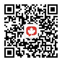 红枫叶微信公众号二维码